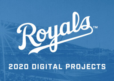 2020 Digital Projects